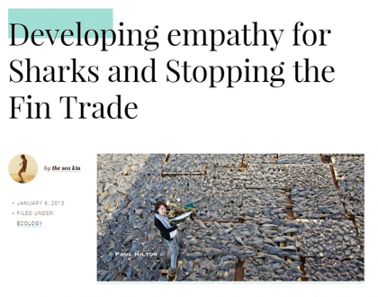 Developing empathy for sharks, sea kin