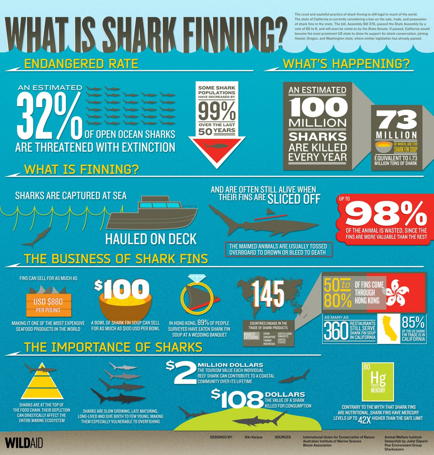 shark-finning_wildaid, visually