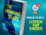 LitPick Award and Interview